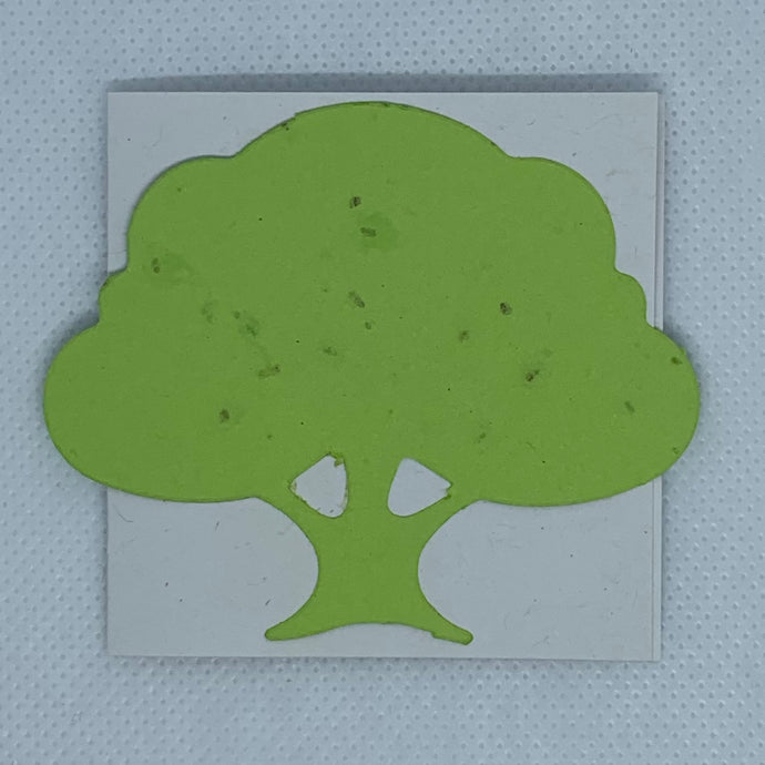 BLF8 MINI-CARD WITH SEED PAPER SHAPE