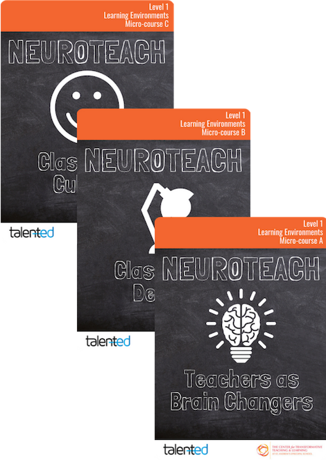 Neuroteach Level 1: Learning Environments Track (Track 1)