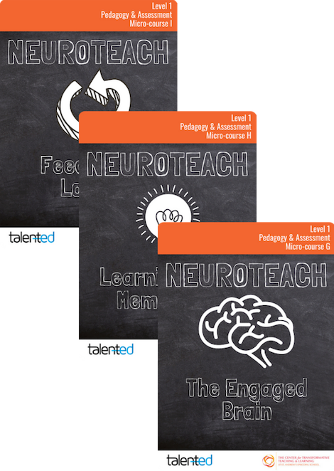 Neuroteach Level 1: Pedagogy & Assessment Track (Track 3)