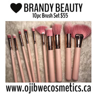 10pc brush set with fan brush pink set