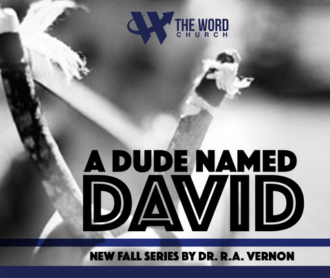 A Dude Named David - Series