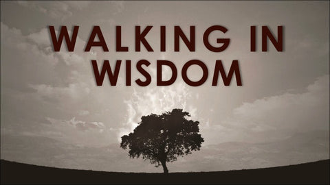 Walking In Wisdom Series