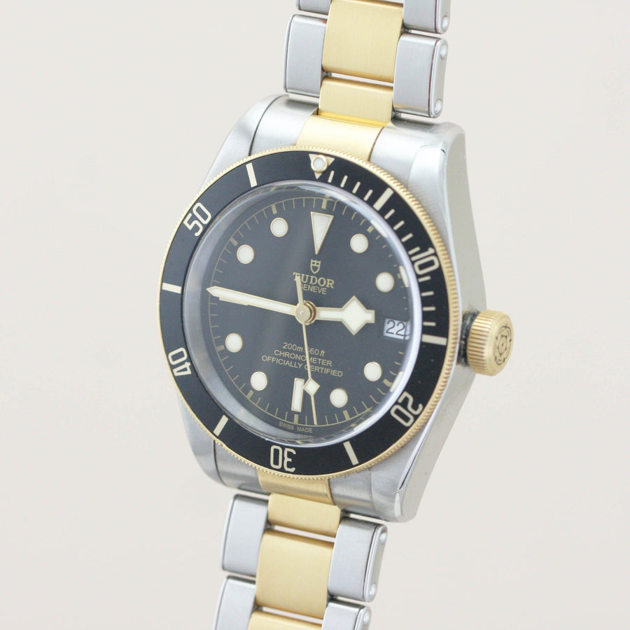 Tudor Black Bay Heritage Steel & Gold 79733N 2017 - Subdial