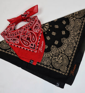 Texan Embroidered Bandana