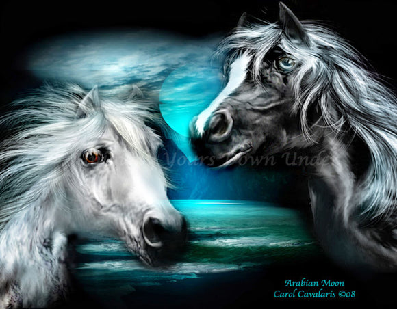 Arabian Moon Diamond Painting Kit - Carol Cavalaris