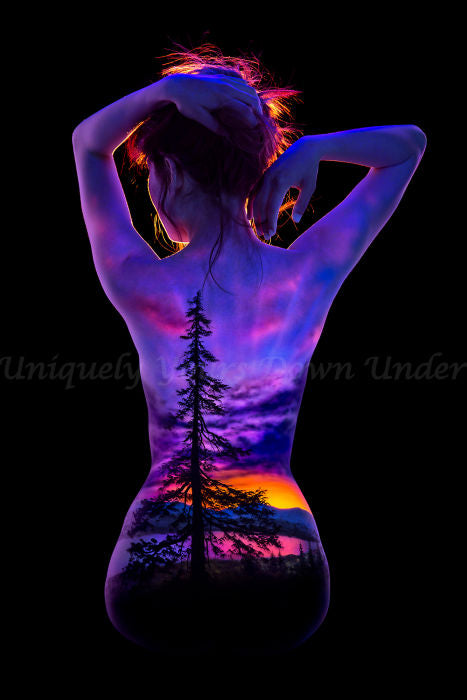 Lone Pine Diamond Painting Kit - John Poppleton