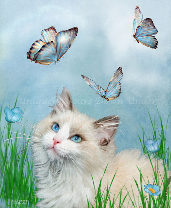 Rag Doll Kitty & Butterflies Diamond Painting Kit - Carol Cavalaris