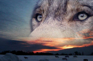 Wolf 03 Diamond Painting Kit