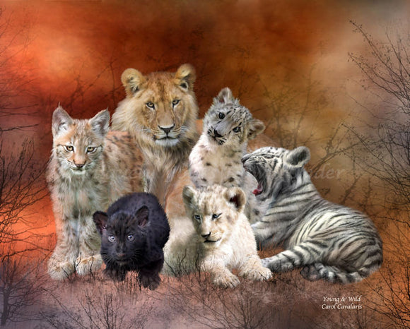 Young & Wild Diamond Painting Kit - Carol Cavalaris
