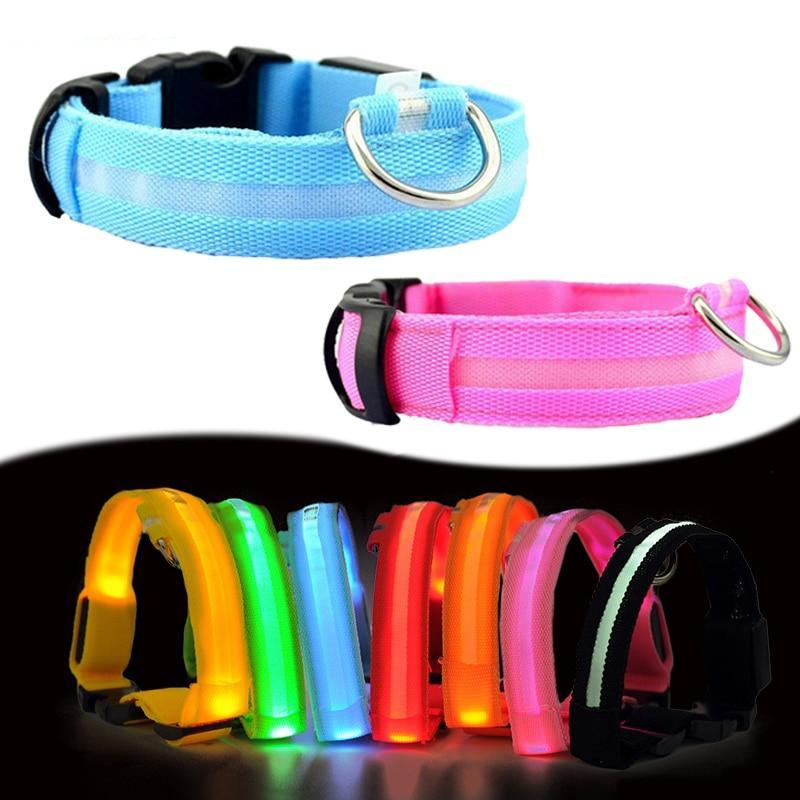 Nylon LED Dog Collar with Glow In The Dark Pendant