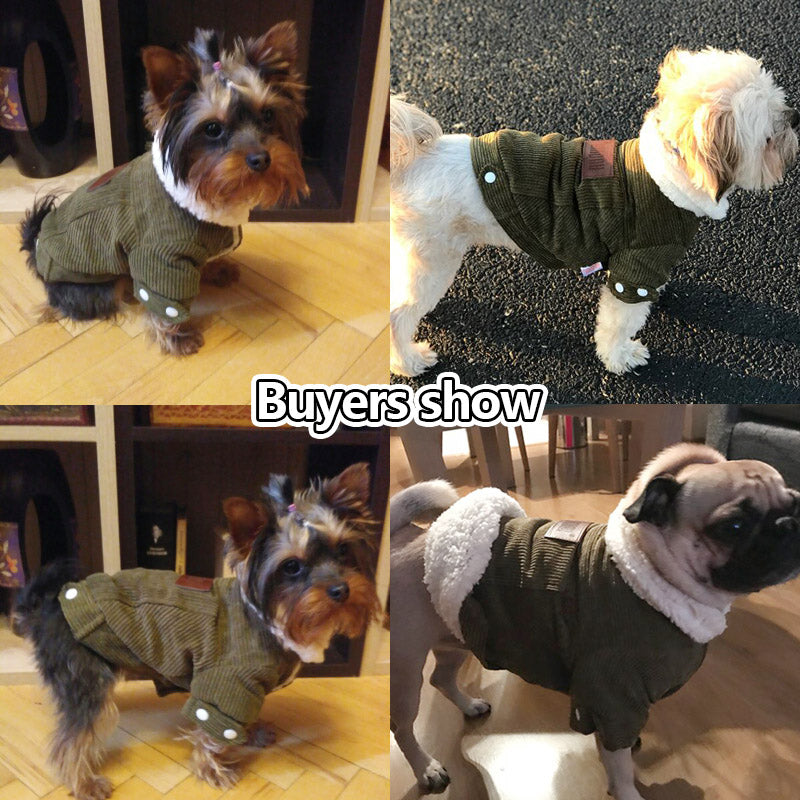 dog clothes coats jackets sweaters
