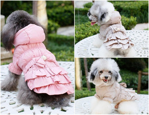 Designer Dog Clothes for Winter - Jackets and Coats