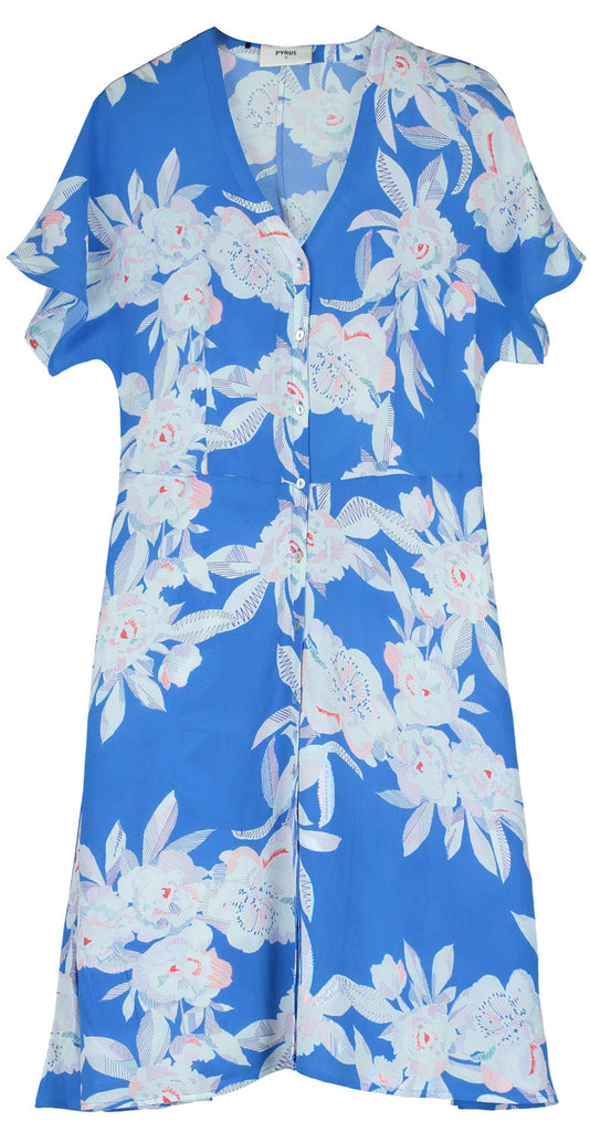 Francine Silk Dress in Line Floral Blue Print
