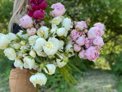 4 Week June Bouquet Subscription