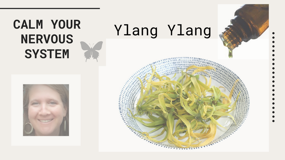 Ylang Ylang Essential Oil Benefits