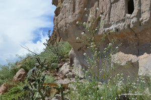 Jpeg Photo Download 180 Pueblo - Bandelier National Monument