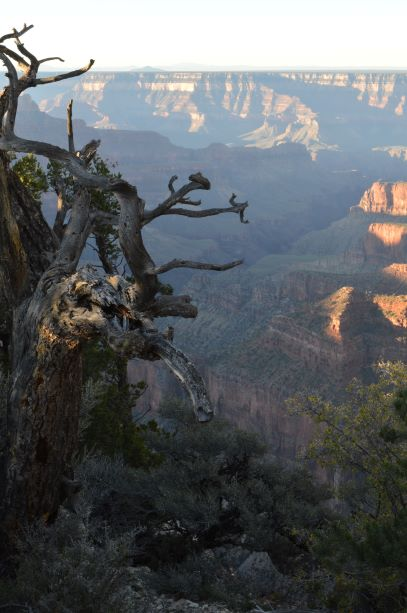 Jpeg Photo Download 190 Supai - North Rim Grand Canyon National Park