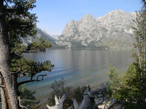 Jpeg Photo Download 205 Infinity - Lake Jenny Grand Teton National Park Wyoming