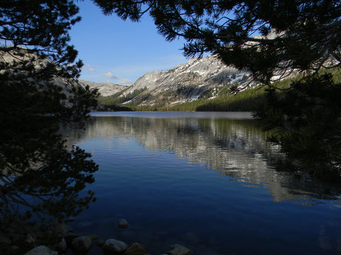 Jpeg Photo Download 238 Muir Reflects - Tenaya Lake Yosemite National Park California.