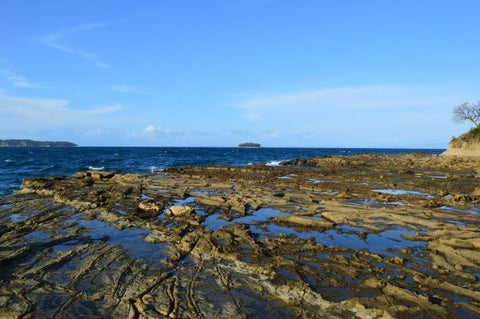 Jpeg Photo Download 255 Tide Pools - Contadora Island Panama