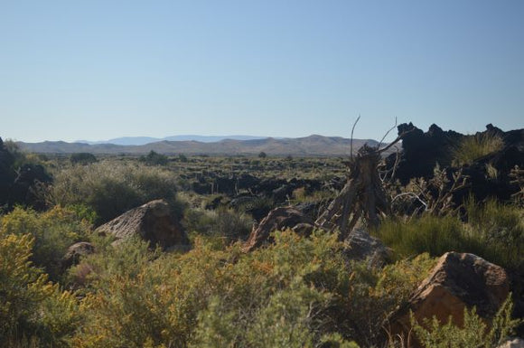 Jpeg Photo Download - Malpais 290 -  Valley of the Fires New Mexico