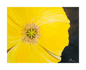 Acrylic Painting, Flower Paintings, Nature, Acrylic on Canvas, Original, Wall Art, Paintings, Yellow Flower, Poppy,