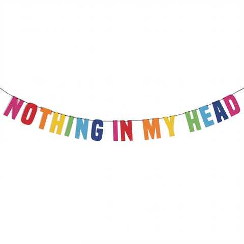 Nothing in my Head String Bunting