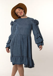 Iris Dress Denim