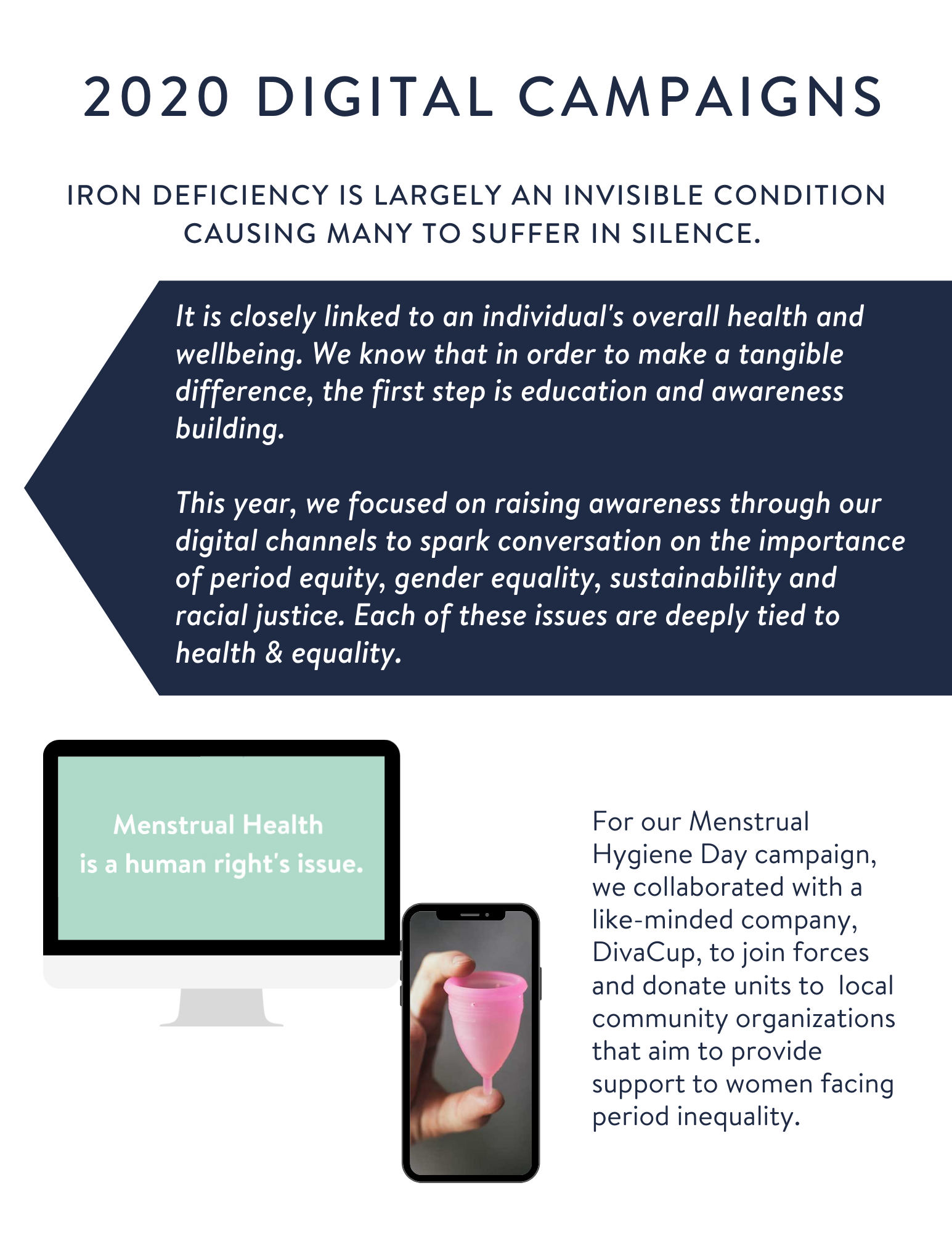 2020- Lucky Iron Fish Impact Report