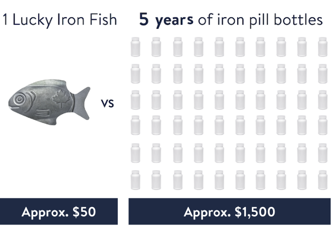 1 Lucky Iron costs approx. $50 and lasts 5 years vs. 5 years of iron pill bottles cost approx. $1,500
