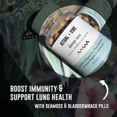 Herbal Supplement 2-Pack (Beauty Bomb & Seamoss Bladderwrack Duo)