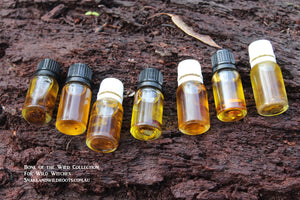 Bone of the Wild Folk Magic Conjura Oil Collection