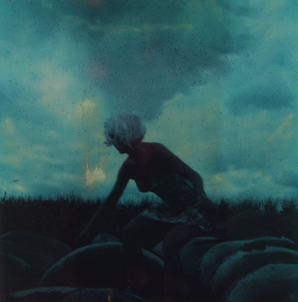 The Eyes of the Fox by Carmen De Vos - Uitgeverij Anderzijds - Polaroid Photography - Limited edition Print - The Cornfield