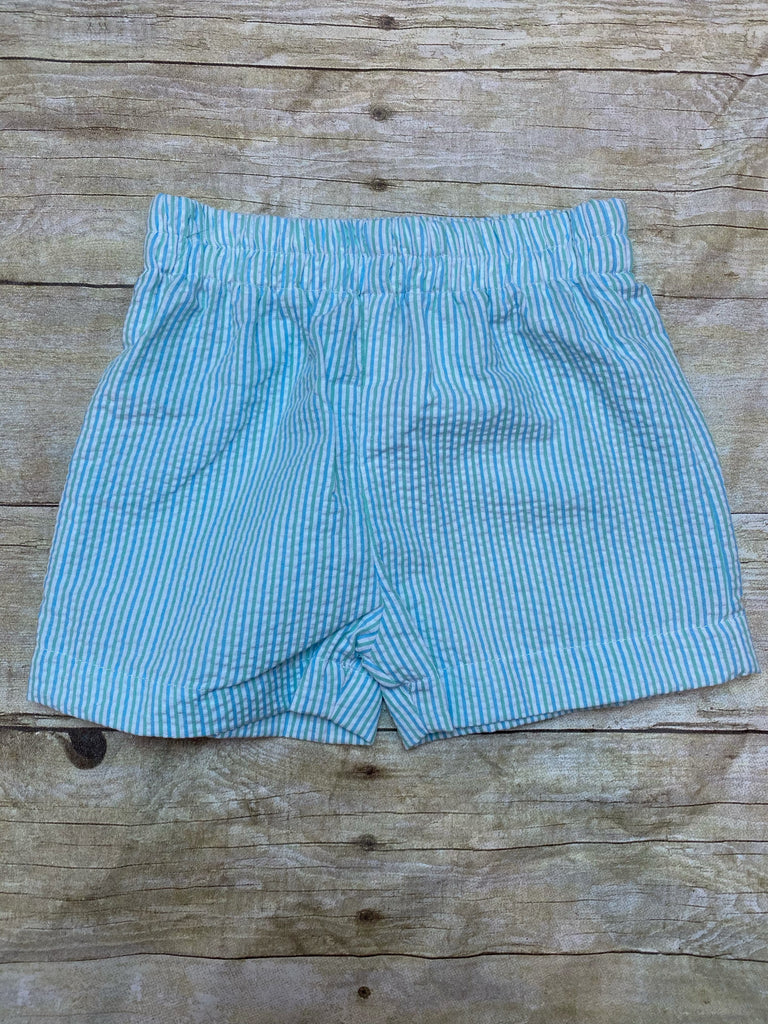 Blue & Green Stripe Shorts
