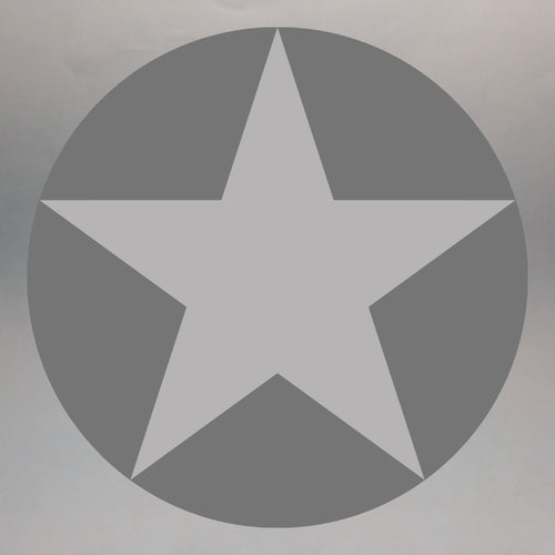USAF Low Vis Star insignia