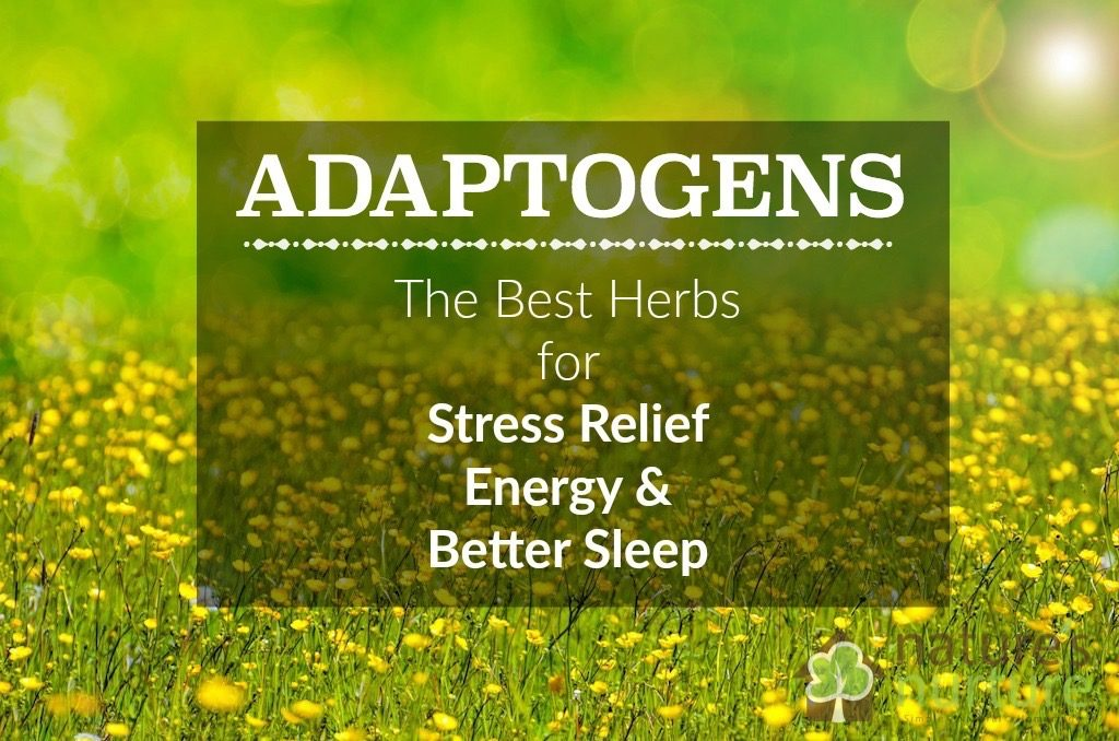 SUPREME ADAPTOGEN Formula - Shen & Jing, Stress, Immune and Adrenal Energy Formula