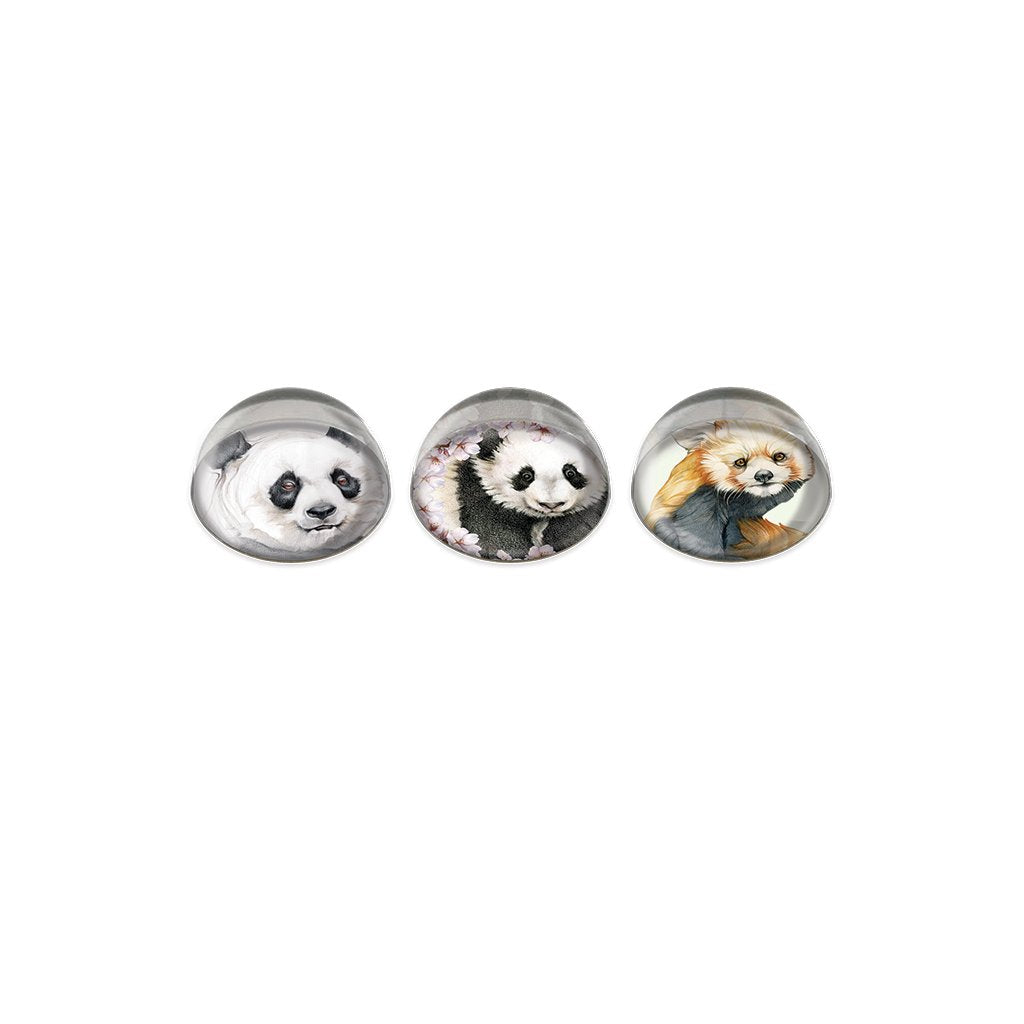 [0046-MGC] Panda Cabochon Magnet or Paper Weight Set