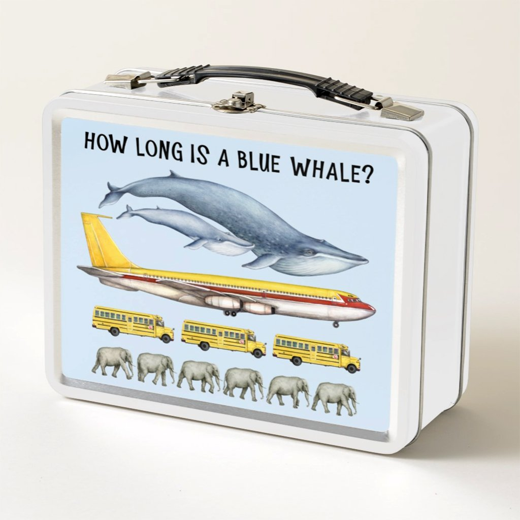 [029-LBT] How Long is a Blue Whale Lunch Box