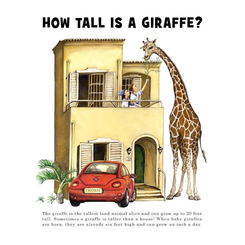 [SA-034] How Tall Giraffe Stock Art