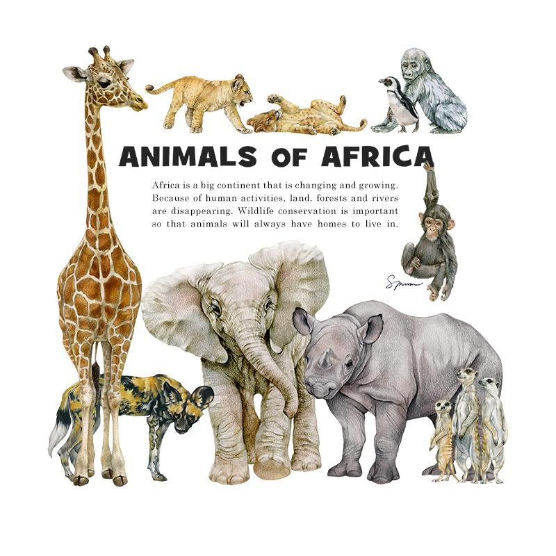 [SA-050] Animals Africa Stock Art