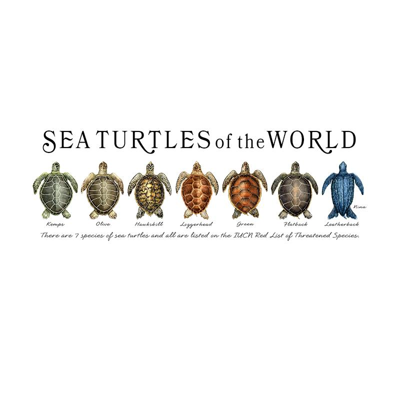 [SA-078] World Sea Turtles Row Stock Art