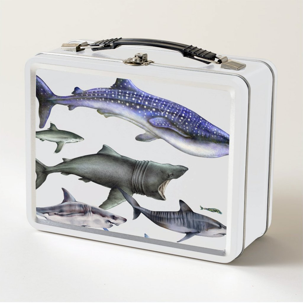 [079-LBT] Sharks of the World Lunch Box FB