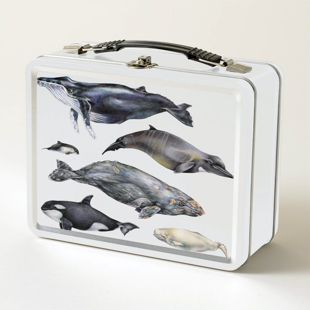[080-LBT] Whales of the World Lunch Box