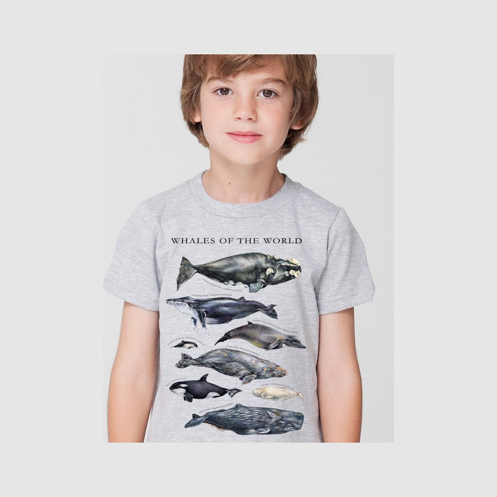 [080-T] Whales of the World Tee