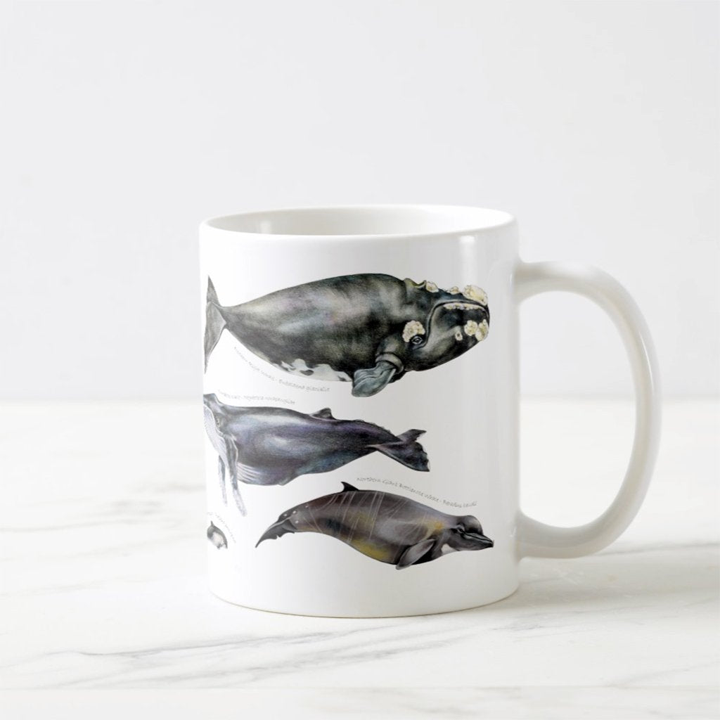 [080-CMG] Whales of the World Mug
