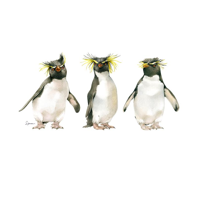 [SA-175] Rockhopper Trio Stock Art