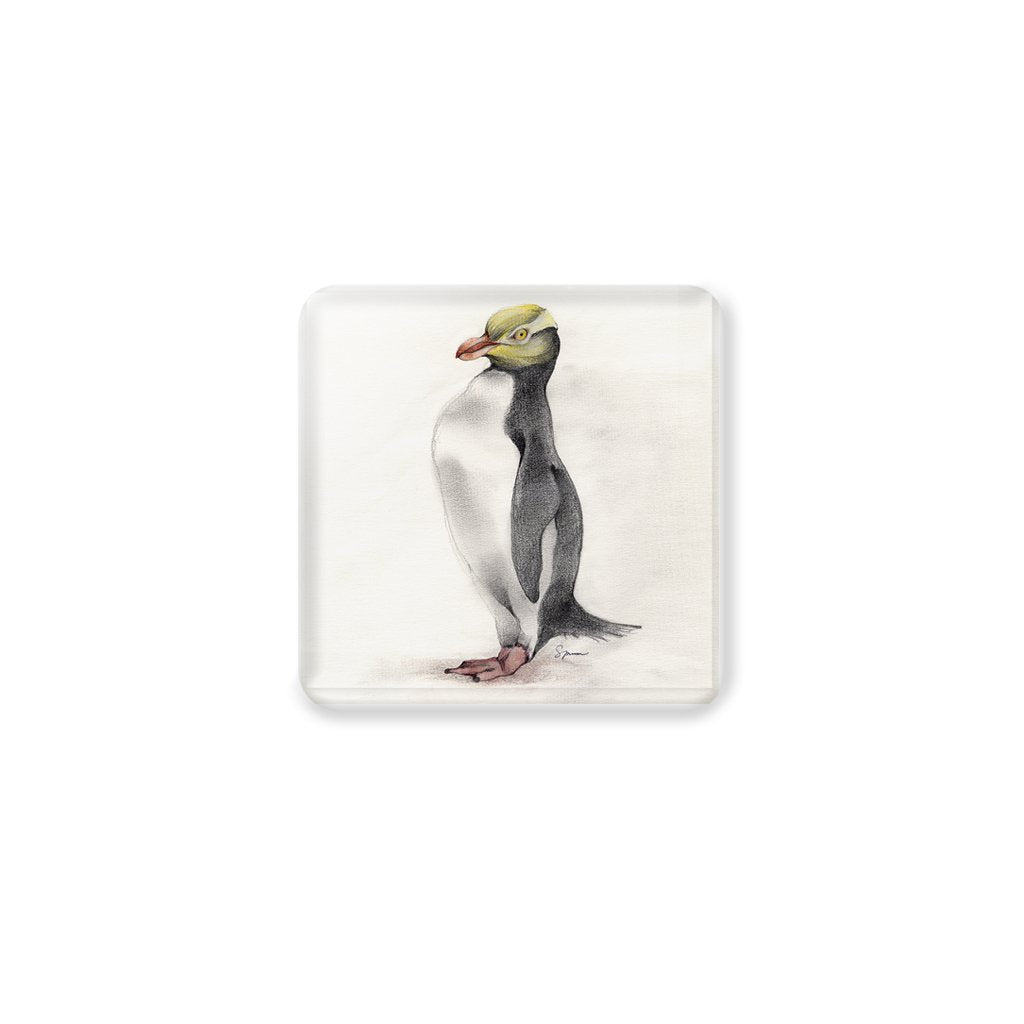 [CST-178] Yellow Eyed Penguin Coasters