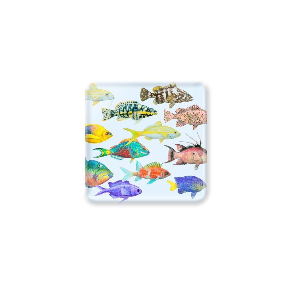 [CST-200] Fish of the Atlantic Coasters