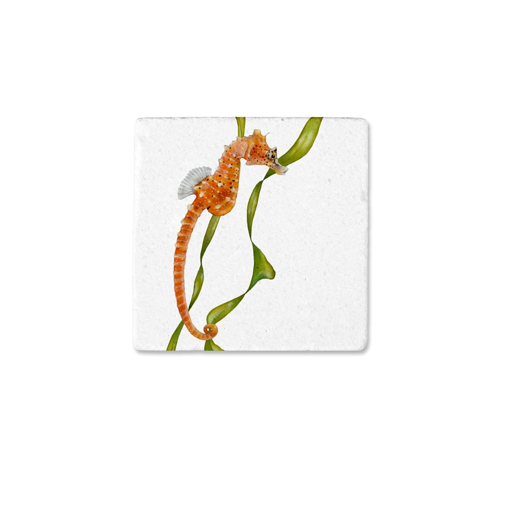 [CST-221] Short Snouted Seahorse Coasters