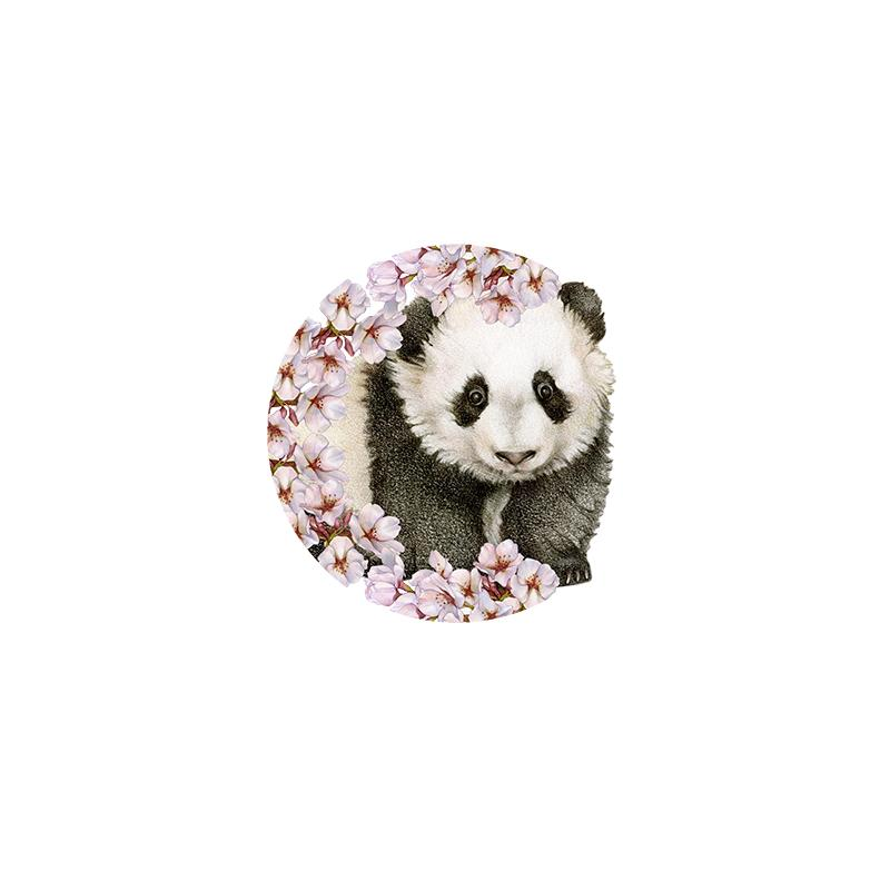 [SA-403] Cherry Blossom Panda Stock Art